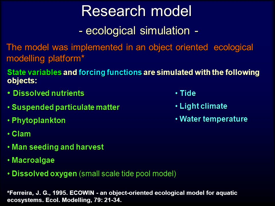 Research model - ecological simulation - State variables and forcing functions are simulated with the following objects: Dissolved nutrients Dissolved nutrients Suspended particulate matter Suspended particulate matter Phytoplankton Phytoplankton Clam Clam Man seeding and harvest Man seeding and harvest Macroalgae Macroalgae Dissolved oxygen (small scale tide pool model) Dissolved oxygen (small scale tide pool model) Tide Tide Light climate Light climate Water temperature Water temperature The model was implemented in an object oriented ecological modelling platform* *Ferreira, J.