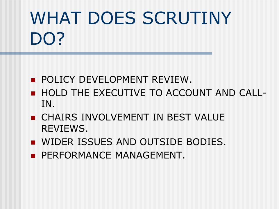 WHAT DOES SCRUTINY DO. POLICY DEVELOPMENT REVIEW.