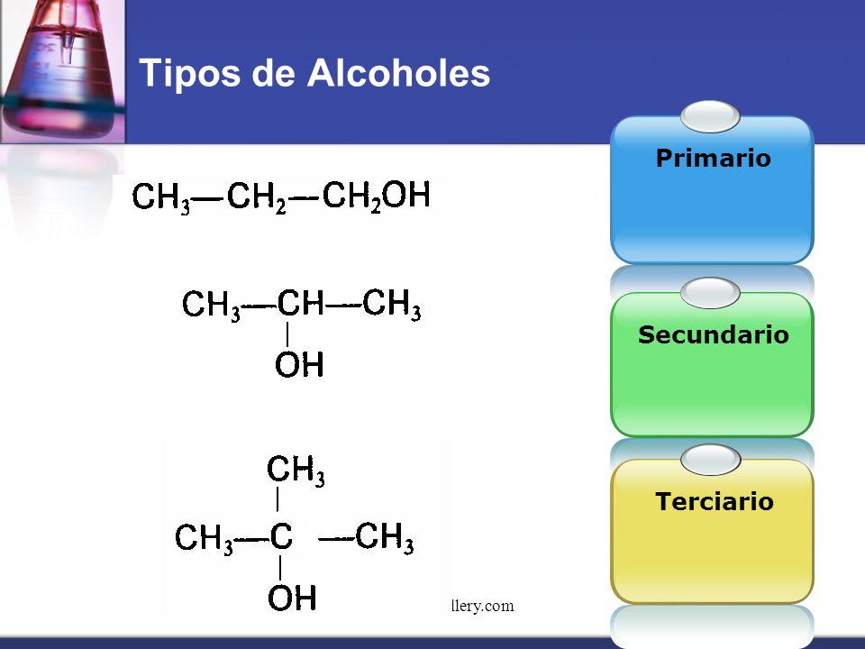 www.themegallery.com Tipos de Alcoholes Primario SecundarioTerciario