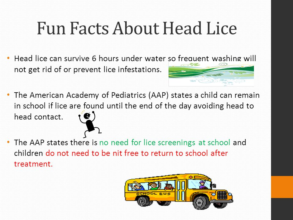 Fun Facts About Head Lice Head lice can survive 6 hours under water so frequent washing will not get rid of or prevent lice infestations. The American
