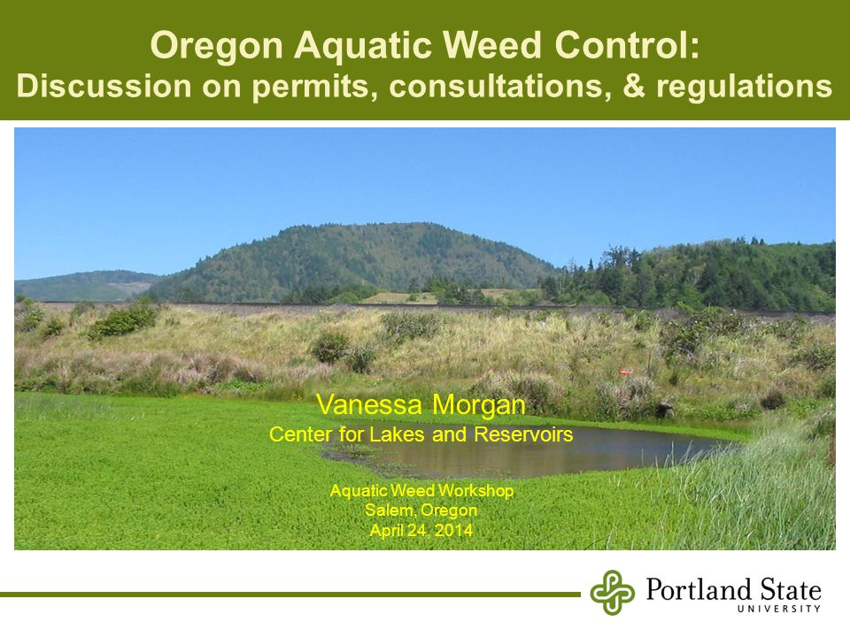 Oregon Aquatic Weed Control: Discussion on permits, consultations, & regulations Vanessa Morgan Center for Lakes and Reservoirs Aquatic Weed Workshop Salem, Oregon April 24, 2014