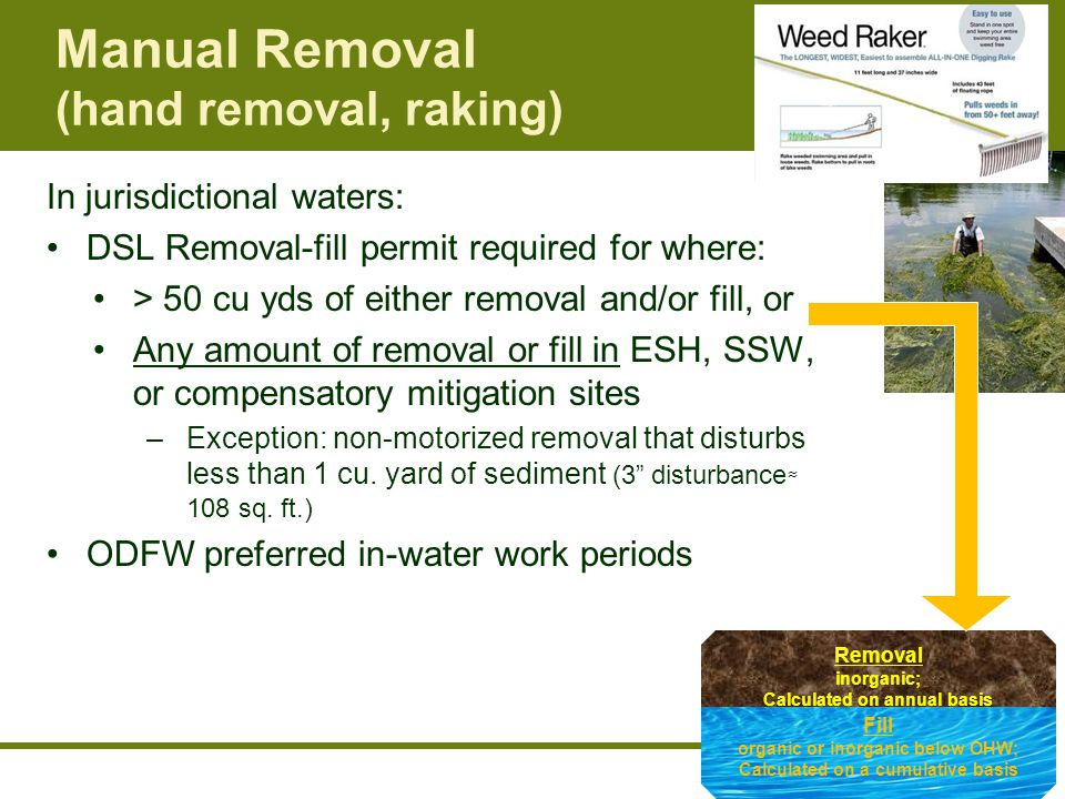 Manual Removal (hand removal, raking) In jurisdictional waters: DSL Removal-fill permit required for where: > 50 cu yds of either removal and/or fill, or Any amount of removal or fill in ESH, SSW, or compensatory mitigation sites –Exception: non-motorized removal that disturbs less than 1 cu.