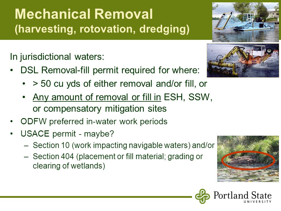 Mechanical Removal (harvesting, rotovation, dredging) In jurisdictional waters: DSL Removal-fill permit required for where: > 50 cu yds of either removal and/or fill, or Any amount of removal or fill in ESH, SSW, or compensatory mitigation sites ODFW preferred in-water work periods USACE permit - maybe.