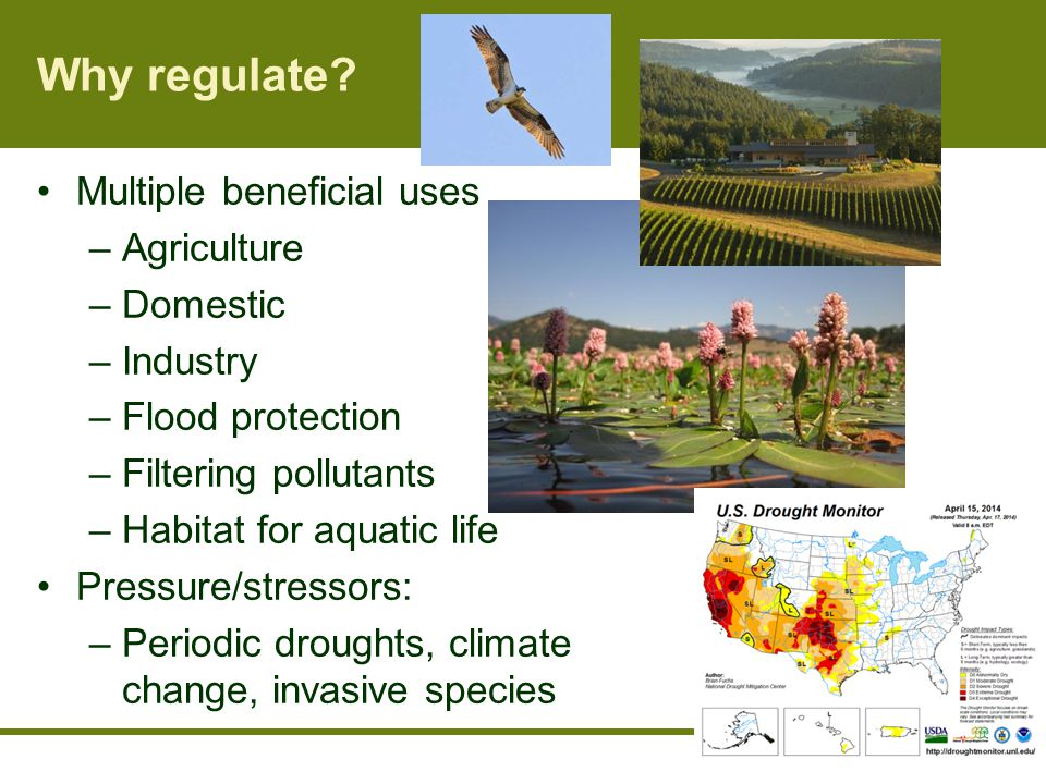 Why regulate.