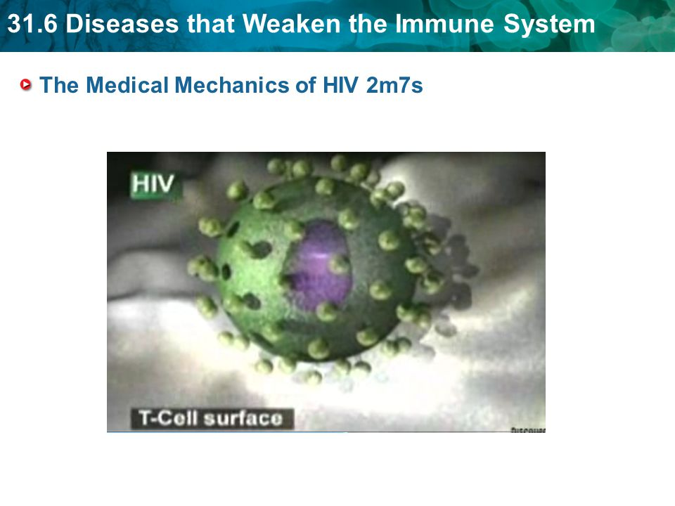 31.6 Diseases that Weaken the Immune System The Medical Mechanics of HIV 2m7s