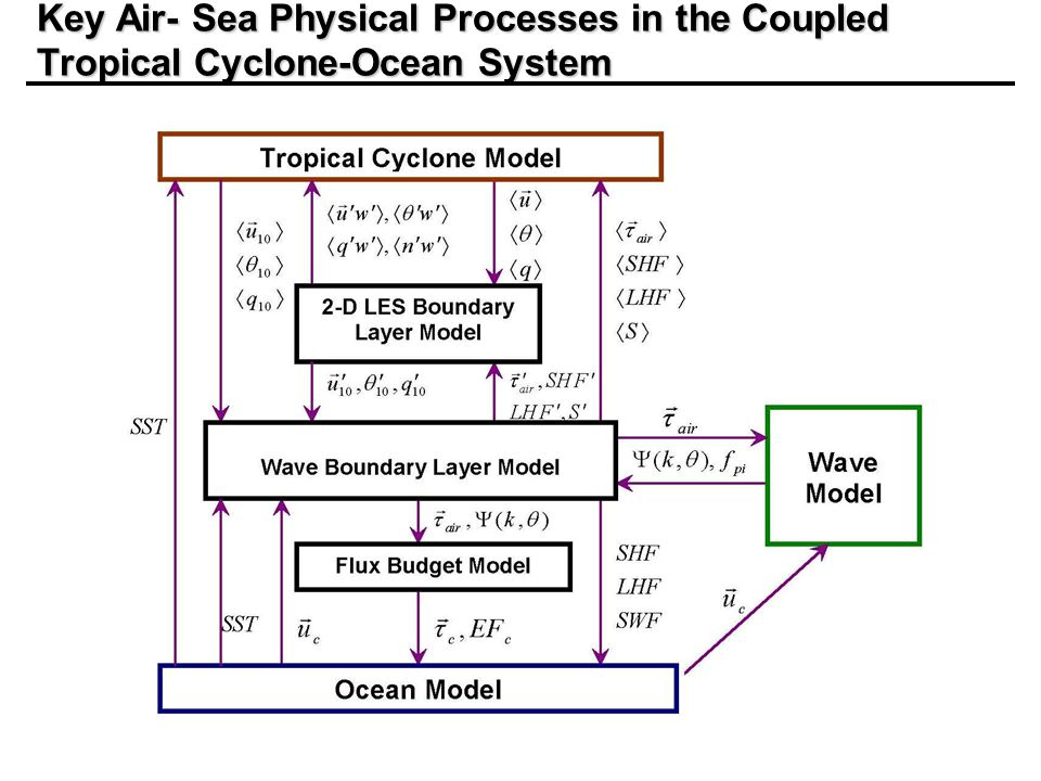 Key Air- Sea Physical Processes in the Coupled Tropical Cyclone-Ocean System