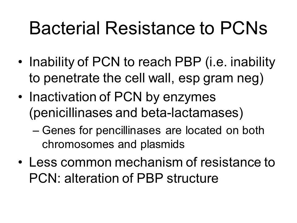 Broad spectrum Penicillins (aka Aminopenicillins) Same action as Penicillin G plus increased activity against gram-negative bacilli –H.