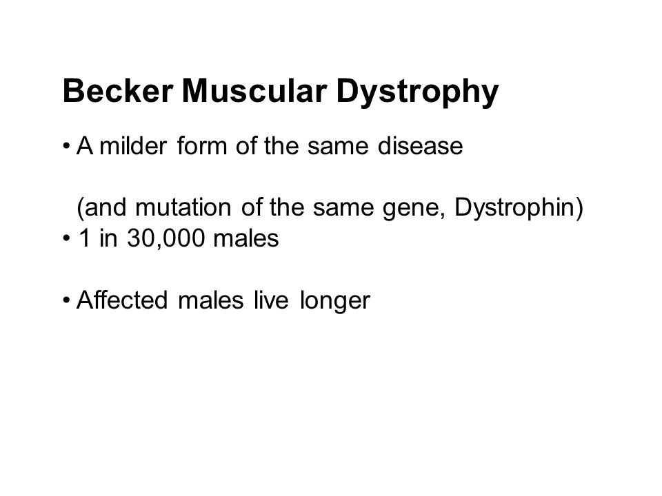 Becker Muscular Dystrophy A milder form of the same disease (and mutation of the same gene, Dystrophin) 1 in 30,000 males Affected males live longer