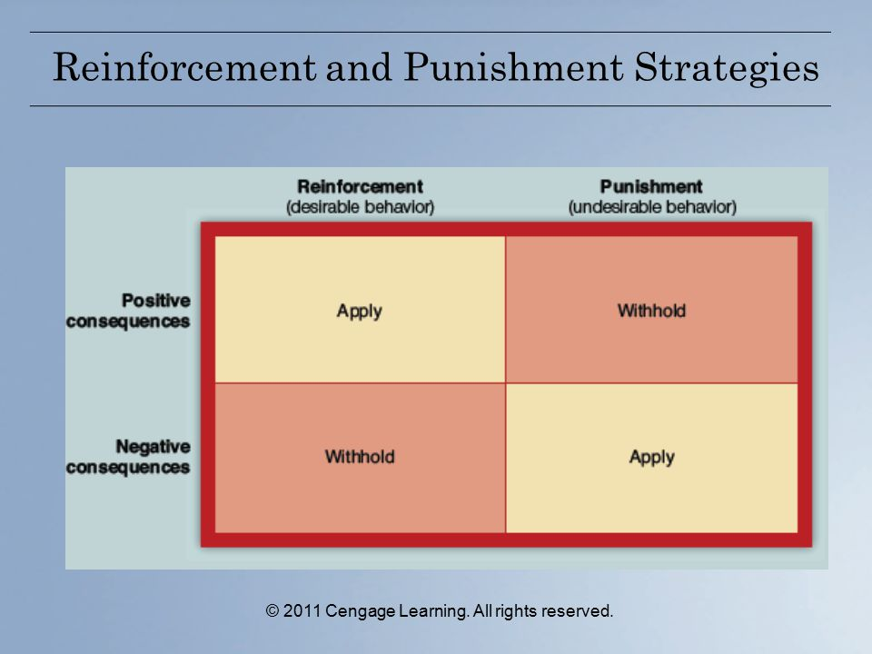 Reinforcement and Punishment Strategies © 2011 Cengage Learning. All rights reserved.