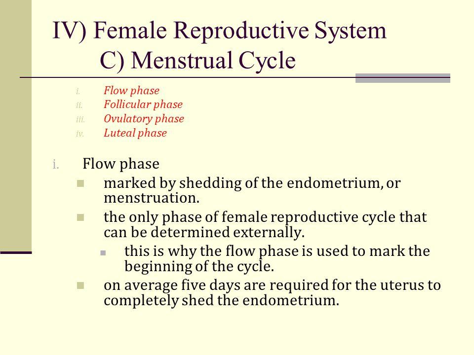 IV) Female Reproductive System C) Menstrual Cycle i. Flow phase ii. Follicular phase iii. Ovulatory phase iv. Luteal phase i. Flow phase marked by she