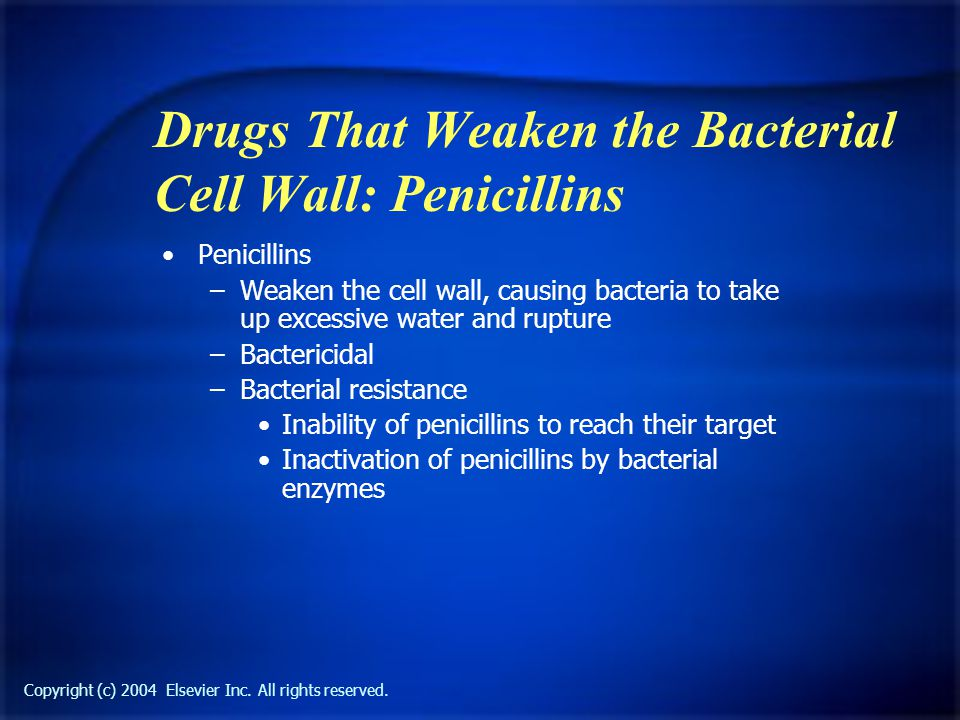 Copyright (c) 2004 Elsevier Inc. All rights reserved. Drugs That Weaken the Bacterial Cell Wall: Penicillins Penicillins –Weaken the cell wall, causin