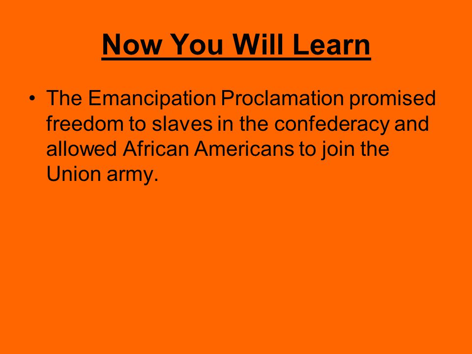 Before You Learned Abolitionists had been fighting to end slavery for many decades before the Civil War began.