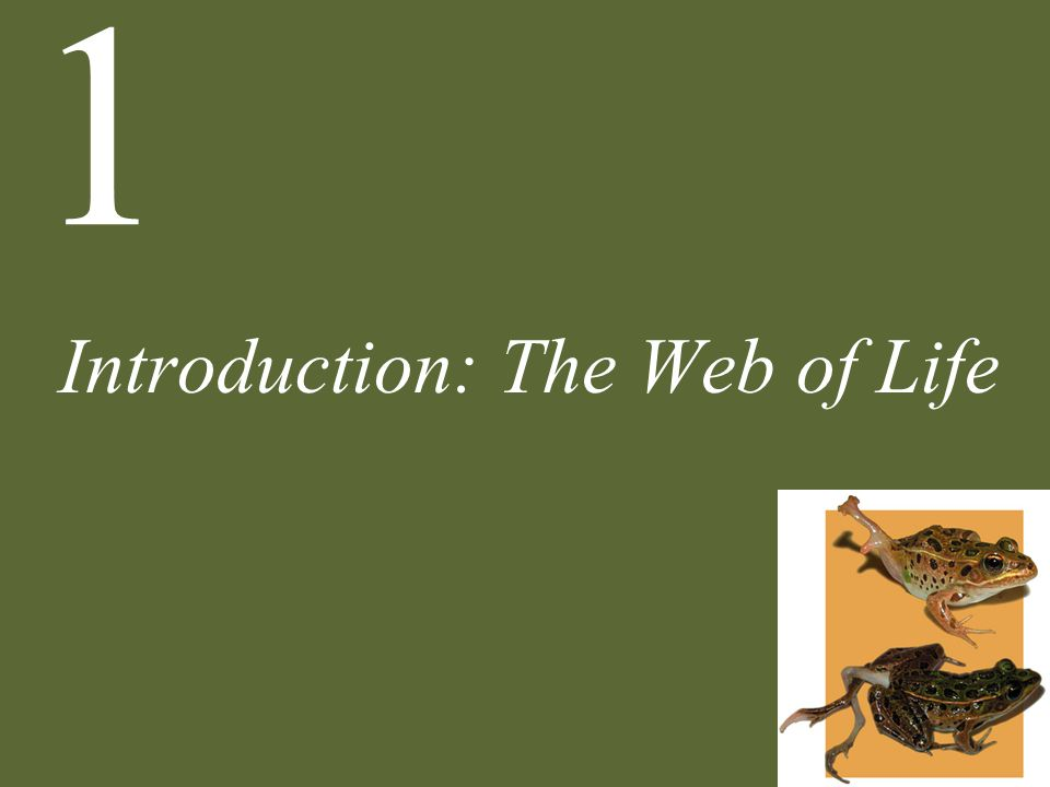 1 Introduction: The Web of Life