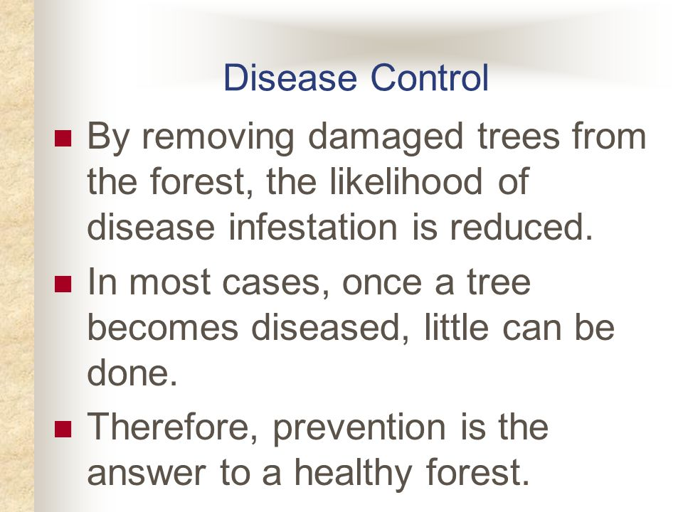 Disease Control By removing damaged trees from the forest, the likelihood of disease infestation is reduced.