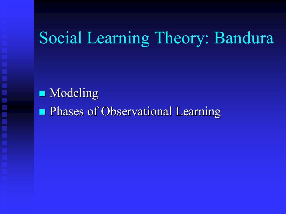 Principles: Extinction n Behavior That Is Not Reinforced Will Weaken n Extinction Burst n Considerations In Classroom Management