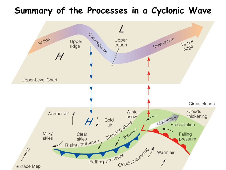 Summary of the Processes in a Cyclonic Wave