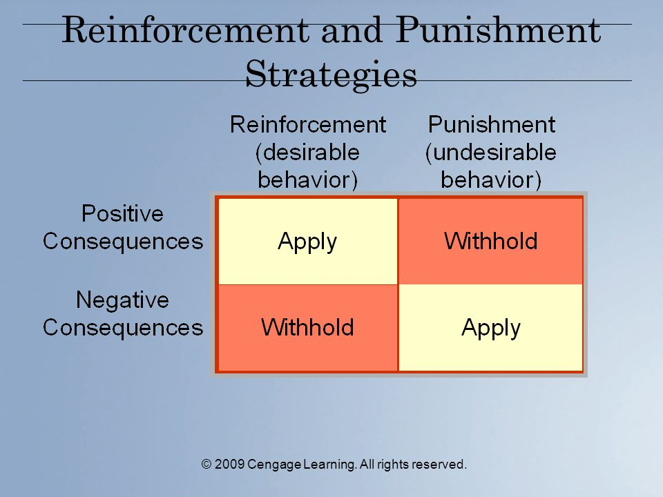 Reinforcement and Punishment Strategies © 2009 Cengage Learning. All rights reserved.