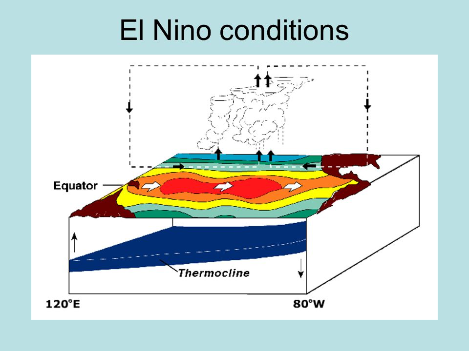 El Nino conditions