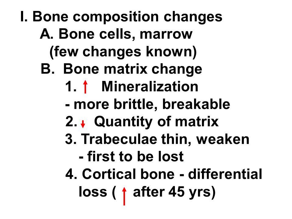 I. Bone composition changes A. Bone cells, marrow (few changes known) B. Bone matrix change 1. Mineralization - more brittle, breakable 2. Quantity of