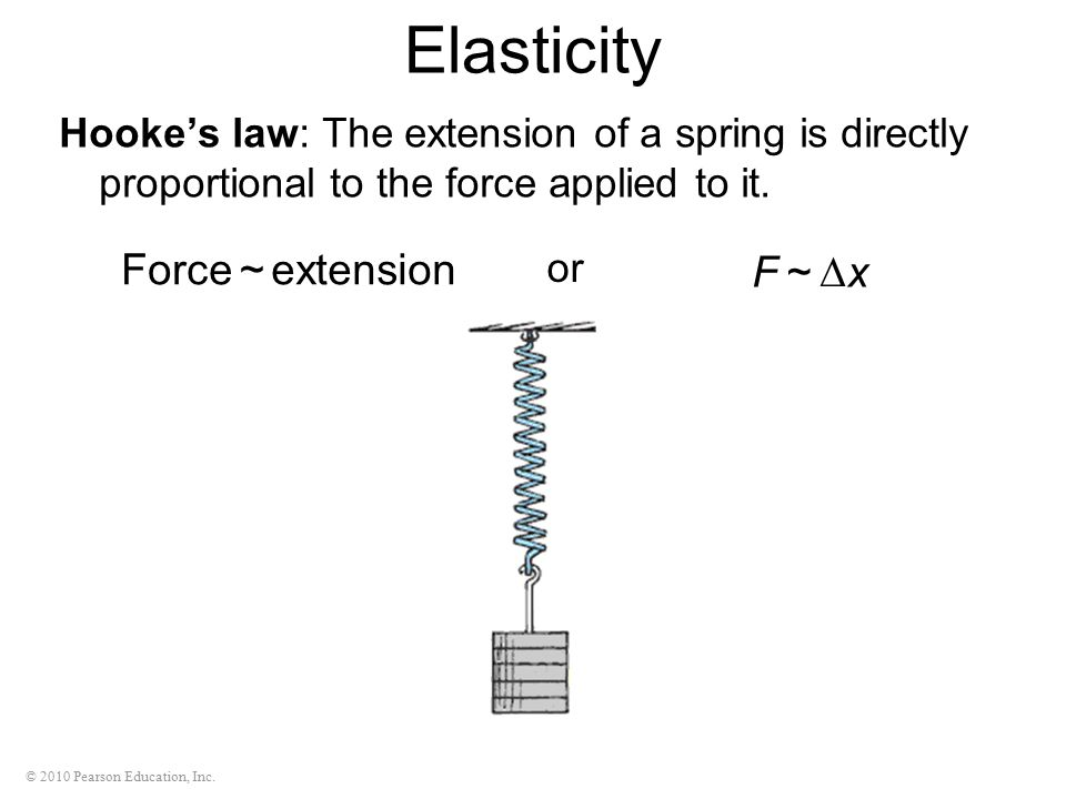 © 2010 Pearson Education, Inc. Elasticity Hooke's law: The extension of a spring is directly proportional to the force applied to it. extension ~ Forc