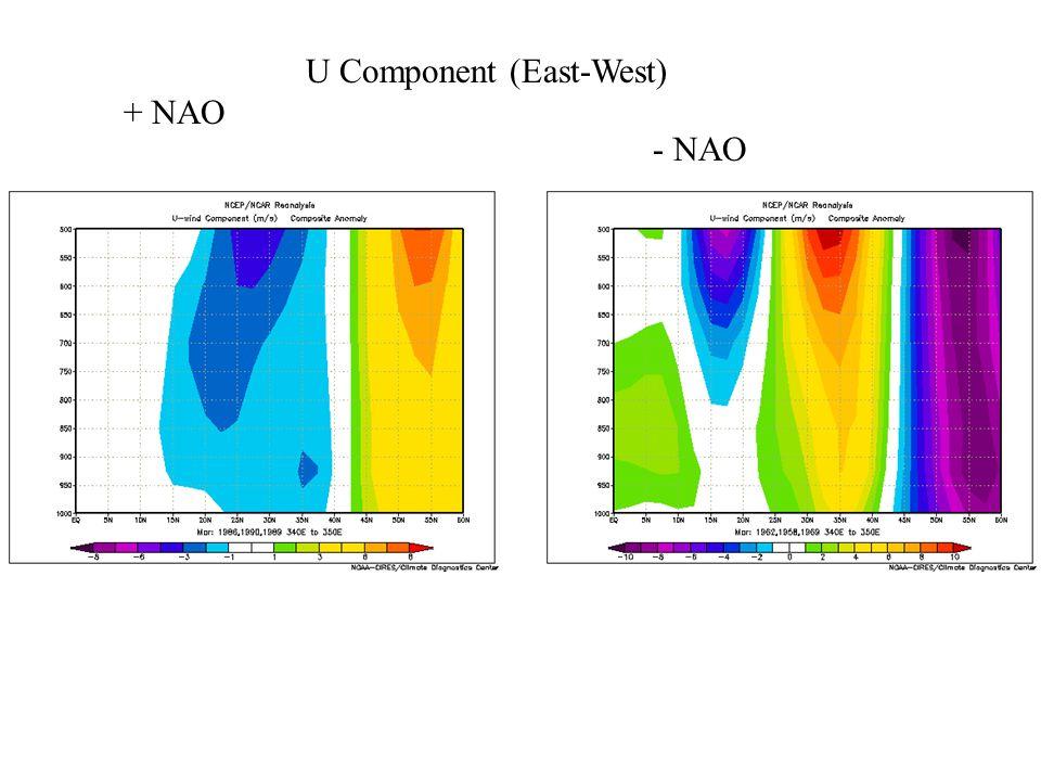 U Component (East-West) + NAO - NAO