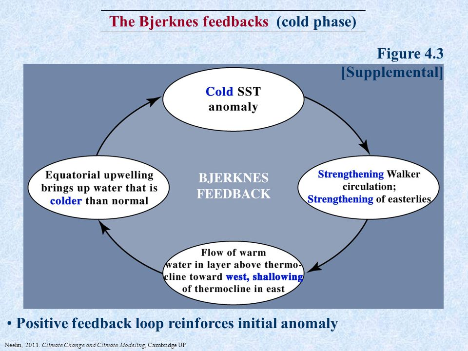 The Bjerknes feedbacks (cold phase) Positive feedback loop reinforces initial anomaly Figure 4.3 [Supplemental] Neelin, 2011.