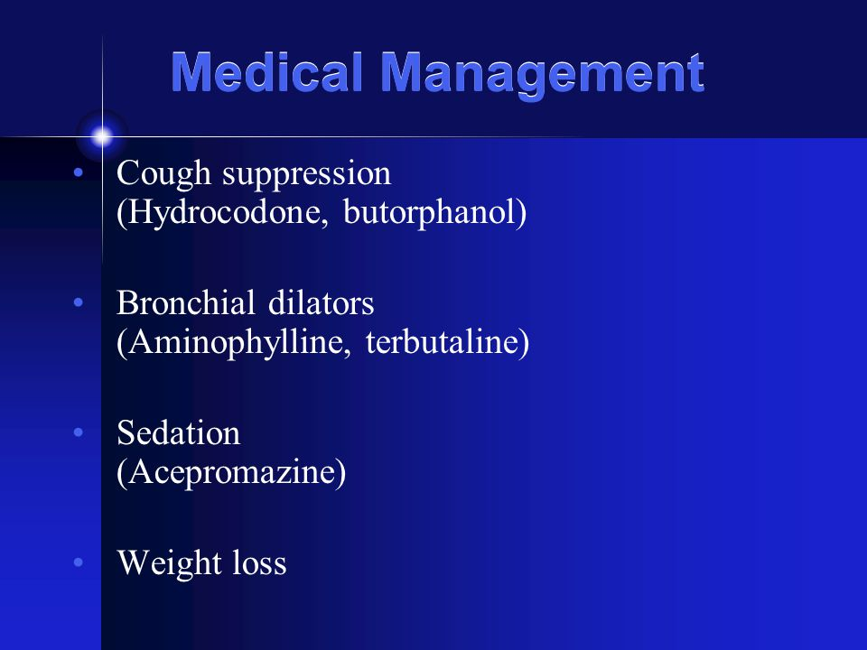 Medical Management Cough suppression (Hydrocodone, butorphanol) Bronchial dilators (Aminophylline, terbutaline) Sedation (Acepromazine) Weight loss