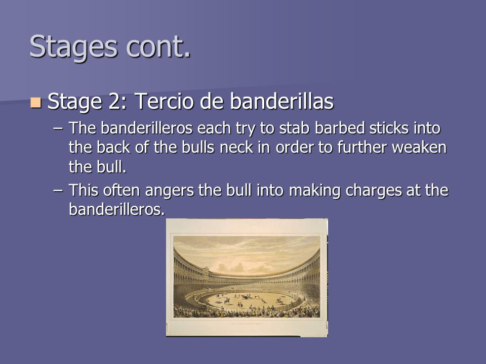 Stages cont. Stage 2: Tercio de banderillas Stage 2: Tercio de banderillas –The banderilleros each try to stab barbed sticks into the back of the bull