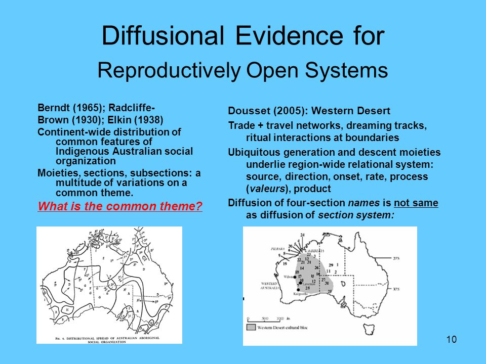 10 Diffusional Evidence for Reproductively Open Systems Berndt (1965); Radcliffe- Brown (1930); Elkin (1938) Continent-wide distribution of common features of Indigenous Australian social organization Moieties, sections, subsections: a multitude of variations on a common theme.
