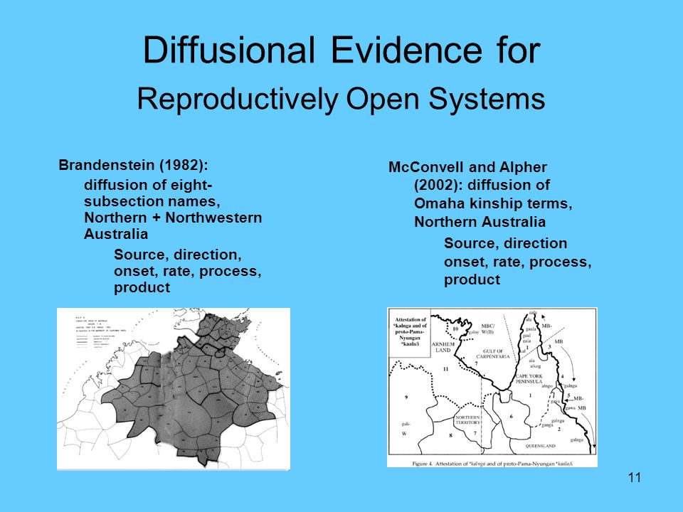 11 Diffusional Evidence for Reproductively Open Systems Brandenstein (1982): diffusion of eight- subsection names, Northern + Northwestern Australia Source, direction, onset, rate, process, product McConvell and Alpher (2002): diffusion of Omaha kinship terms, Northern Australia Source, direction onset, rate, process, product