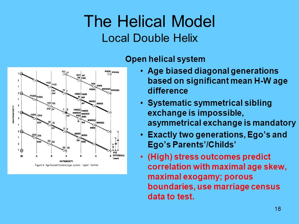 16 The Helical Model Local Double Helix Open helical system Age biased diagonal generations based on significant mean H-W age difference Systematic sy
