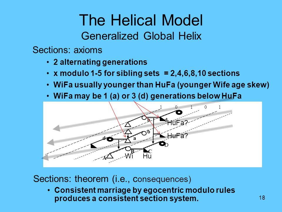 18 The Helical Model Generalized Global Helix Sections: axioms 2 alternating generations x modulo 1-5 for sibling sets = 2,4,6,8,10 sections WiFa usua