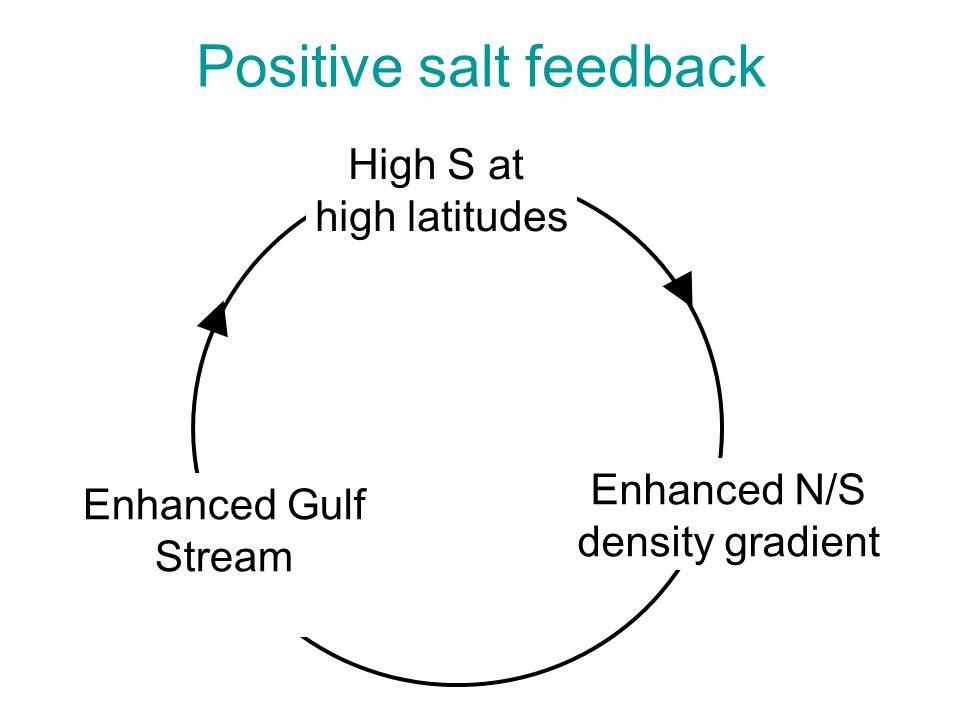 Positive salt feedback High S at high latitudes Enhanced N/S density gradient Enhanced Gulf Stream