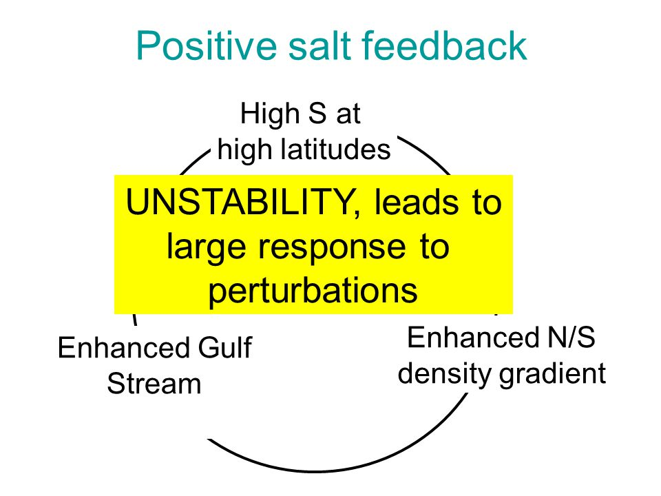Positive salt feedback High S at high latitudes Enhanced N/S density gradient Enhanced Gulf Stream UNSTABILITY, leads to large response to perturbations