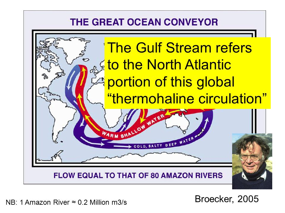 Broecker, 2005 NB: 1 Amazon River ≈ 0.2 Million m3/s The Gulf Stream refers to the North Atlantic portion of this global thermohaline circulation