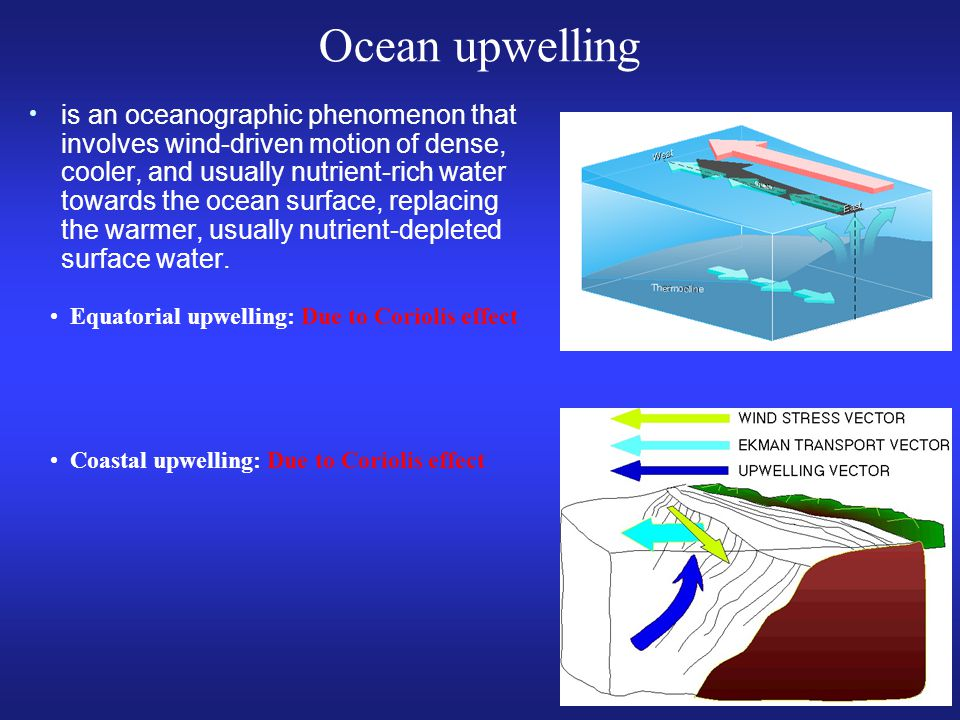 is an oceanographic phenomenon that involves wind-driven motion of dense, cooler, and usually nutrient-rich water towards the ocean surface, replacing the warmer, usually nutrient-depleted surface water.