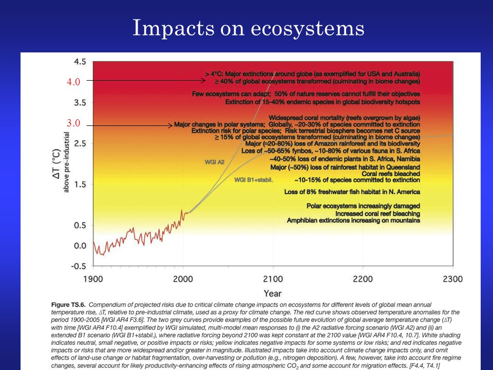 Impacts on ecosystems 4.0 3.0