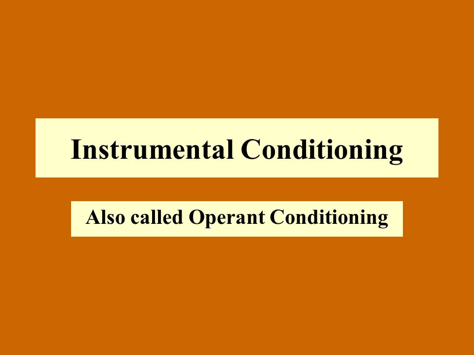 Instrumental Conditioning Also called Operant Conditioning