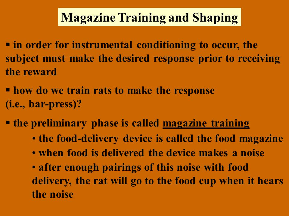 Magazine Training and Shaping  in order for instrumental conditioning to occur, the subject must make the desired response prior to receiving the reward  how do we train rats to make the response (i.e., bar-press).