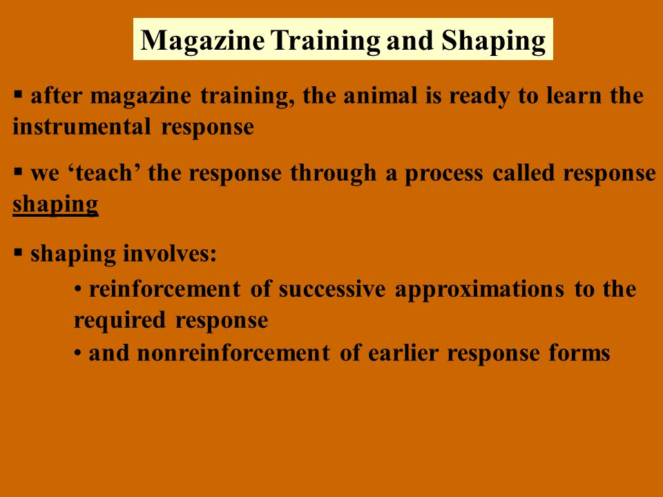 Magazine Training and Shaping  after magazine training, the animal is ready to learn the instrumental response  we 'teach' the response through a process called response shaping  shaping involves: reinforcement of successive approximations to the required response and nonreinforcement of earlier response forms
