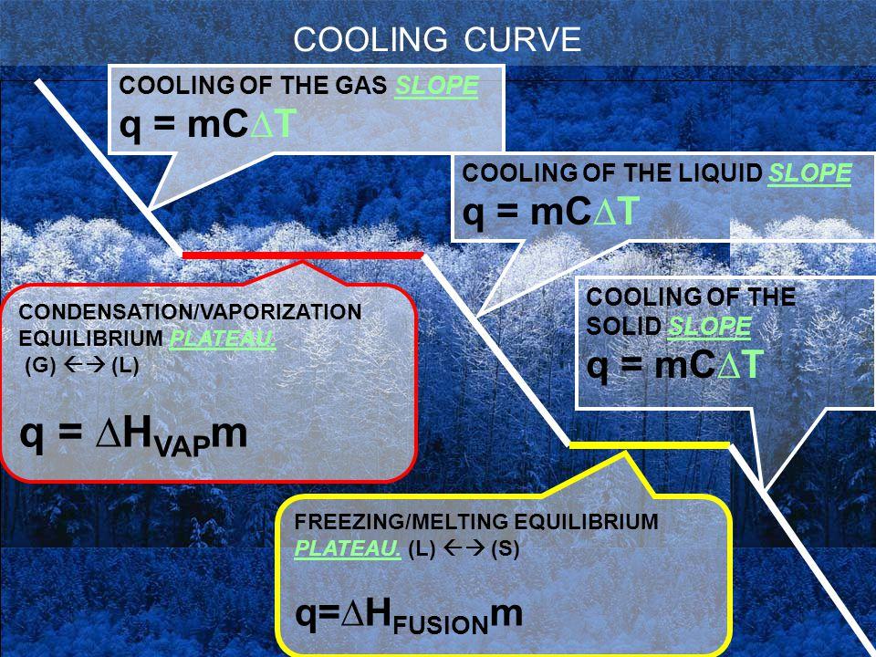 COOLING CURVE COOLING OF THE GAS SLOPE q = mC∆T CONDENSATION/VAPORIZATION EQUILIBRIUM PLATEAU. (G)  (L) q = ∆H VAP m FREEZING/MELTING EQUILIBRIUM PL