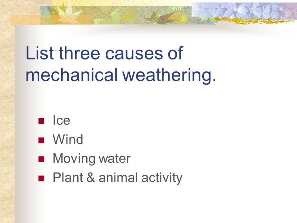 List three causes of mechanical weathering. Ice Wind Moving water Plant & animal activity