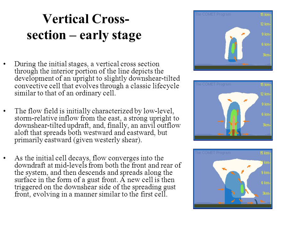 Vertical Cross- section – early stage During the initial stages, a vertical cross section through the interior portion of the line depicts the development of an upright to slightly downshear-tilted convective cell that evolves through a classic lifecycle similar to that of an ordinary cell.