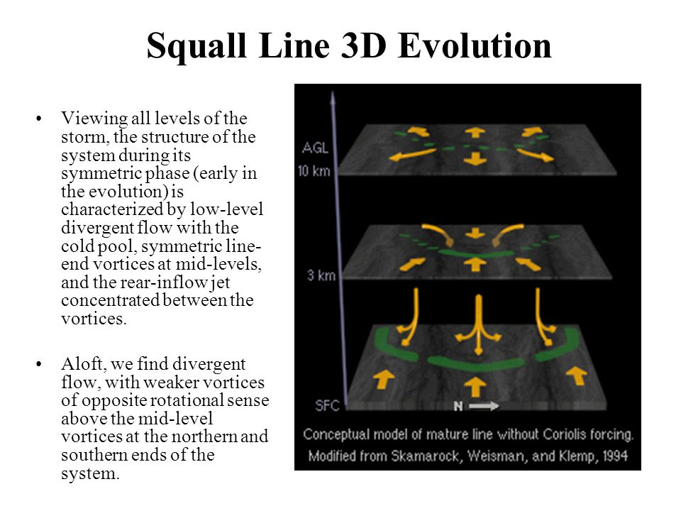 Squall Line 3D Evolution Viewing all levels of the storm, the structure of the system during its symmetric phase (early in the evolution) is characterized by low-level divergent flow with the cold pool, symmetric line- end vortices at mid-levels, and the rear-inflow jet concentrated between the vortices.
