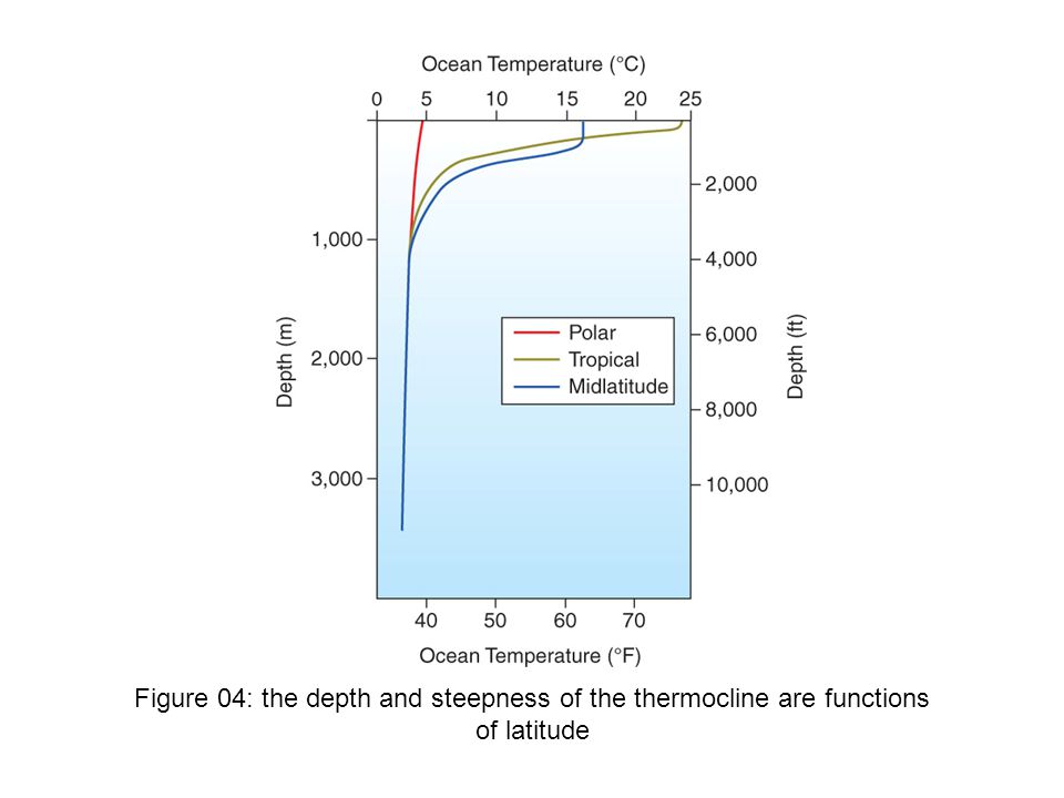 Figure 04: the depth and steepness of the thermocline are functions of latitude