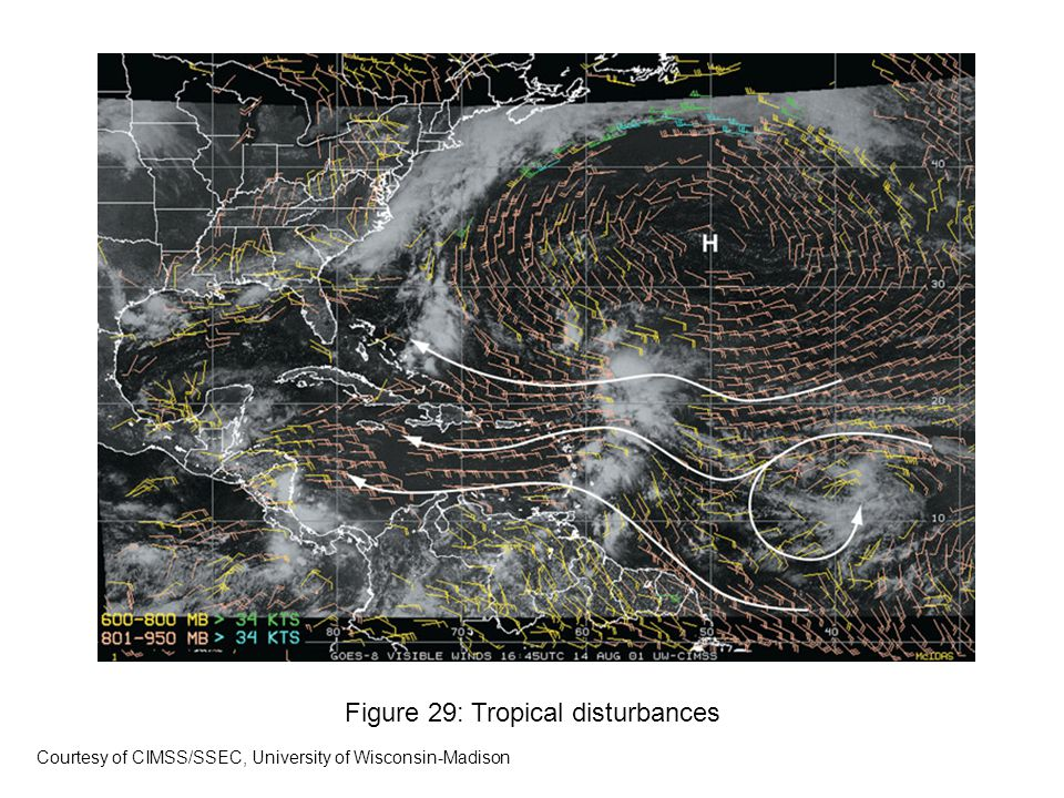 Figure 29: Tropical disturbances Courtesy of CIMSS/SSEC, University of Wisconsin-Madison