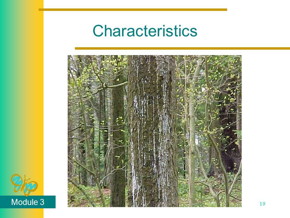Module 3 19 Characteristics
