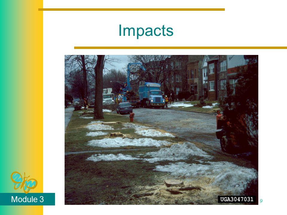 Module 3 9 Impacts