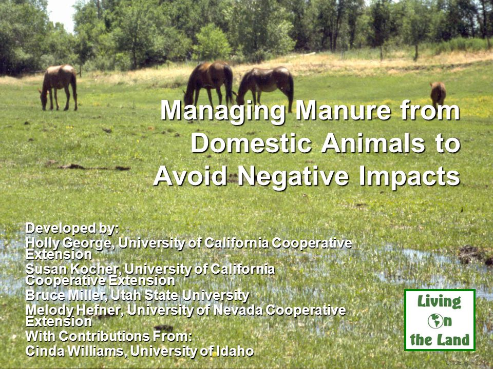 The bottom line (no pun intended) Manage manure to maintain healthy animals and healthy land Applying manure to your property increases the nutrient value and organic content of your soil