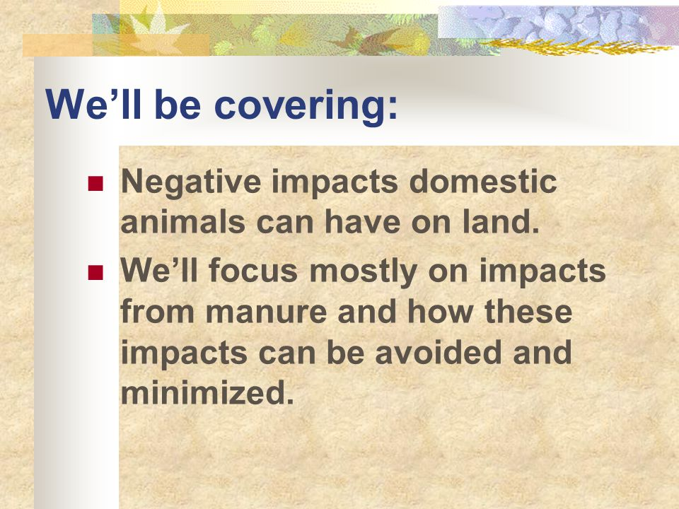 UNCE, Reno, NV What impacts can animals cause?